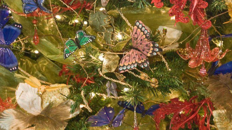 Cuando poner el árbol de Navidad y algunas recomendaciones